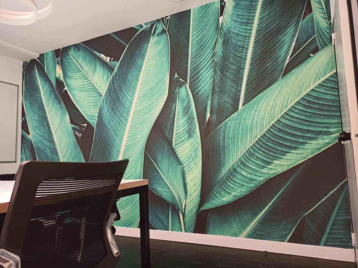 Sala de reuniones Jungle